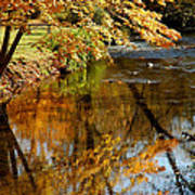 Wolcott River Reflections Poster