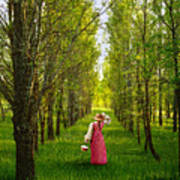 Woman In Vintage Pink Dress Walking Through Woods Poster