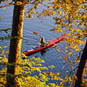Woman Kayaking With Fall Foliage Poster
