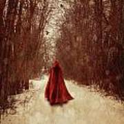 Woman With Red Cape Walking In Woods Poster