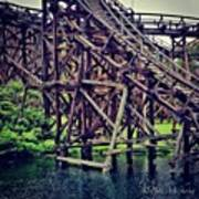 Wooded #rollercoaster At #cedarpoint In Poster by Pete Michaud