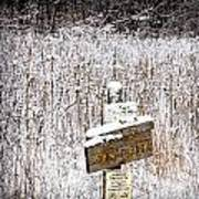 Wooden Sign In Winter By The Yankee Springs Recreation Area In Michigan Poster