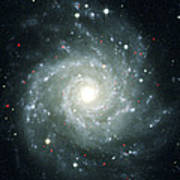 X-ray Sources In M74, Chandra Image Poster