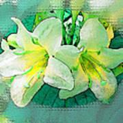 Yellow Aqua Weigela Art Poster