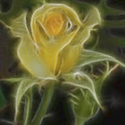 Yellow Fractalius Rose Poster