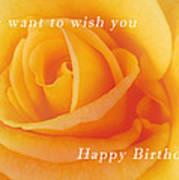 Yellow Rose Birthday Card Poster