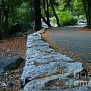 Yosemite Walk Way Poster