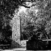 Yulee Sugarmill 2  Black And White Poster