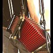 Zydeco Red Accordian Poster