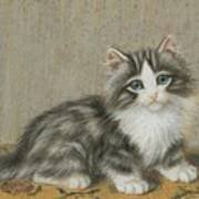 A Kitten On A Table Poster