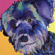 Beau Poster by Pat Saunders-White
