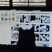 Critic Cat Poster