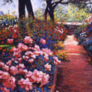 English Tea Roses Poster