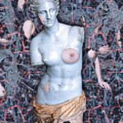 Femininity Poster
