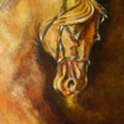 A Winning Racer Brown Horse Poster