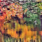 New England Reflections Poster by Betty LaRue