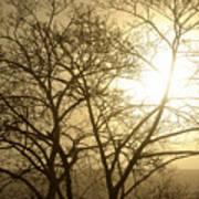 01 Foggy Sunday Sunrise Poster