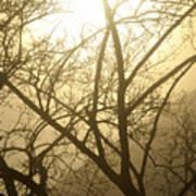 02 Foggy Sunday Sunrise Poster