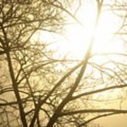 03 Foggy Sunday Sunrise Poster