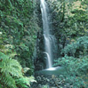 1b6351 Diamond A Waterfall Poster