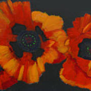 3 Poppies Poster