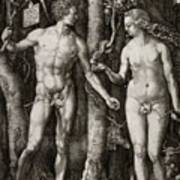 Adam And Eve 1504  Poster