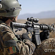 An Afghan Commando Scans The Horizon Poster