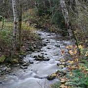 An Autumn Stream Poster