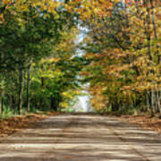 Autumn Backroad  Poster