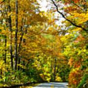 Autumn Drive No.2 Poster