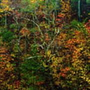 Autumn Hillside Blue Ridge Parkway Poster