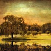 Autumns Golden Mirror Poster