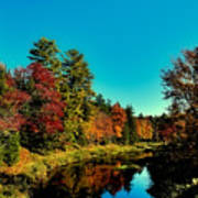 Autumn Splendor On The Moose River Poster
