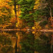 Autumns Calm Poster