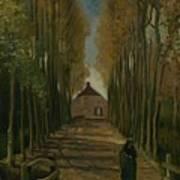 Avenue Of Poplars In Autumn Nuenen, October 1884 Vincent Van Gogh 1853 - 1890 Poster