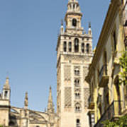 Bell Tower - Cathedral Of Seville - Seville Spain Poster