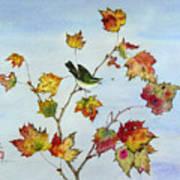 Birds On Maple Tree 8 Poster