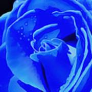 Blue Romance Poster