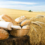 Bread And Wheat Cereal Crops Poster