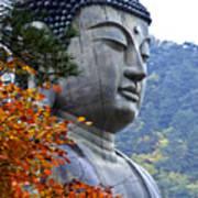 Buddha in Autumn Poster