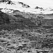 bushes and mosses growing on Skaftafell glacier end moraine Vatnajokull national park in Iceland Poster