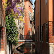 Canal In Venice With Flowers  Poster