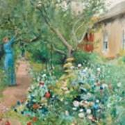 Carl Larsson, Garden Scene From Marstrand On The West Coast Of Sweden. Poster