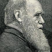 Charles Darwin, English Naturalist Poster
