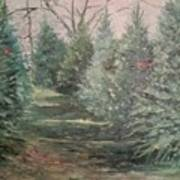 Christmas Tree Lot Poster by Rosemary Kavanagh