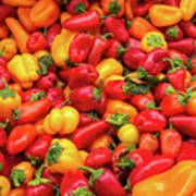 Close Up View Of Small Bell Peppers Of Various Colors Poster