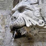 Closeup Of A Public Fountain In Dubrovnik Croatia Poster