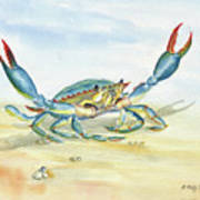 Colorful Blue Crab Poster