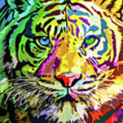 Colorful Tiger Poster