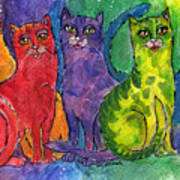 Colourful Cats Poster